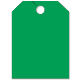 Blank Green Mirror Tag